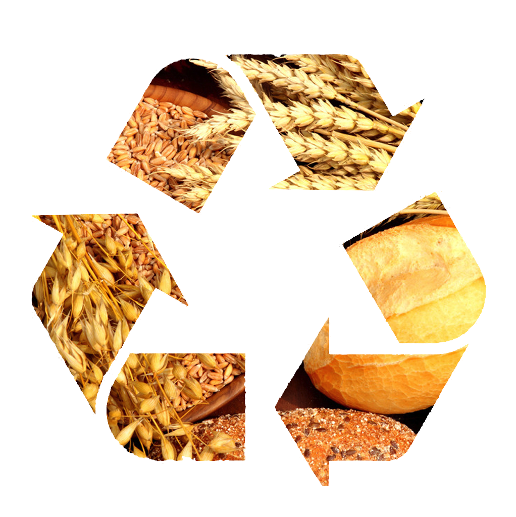 Service-Block1-Feed-Recycle